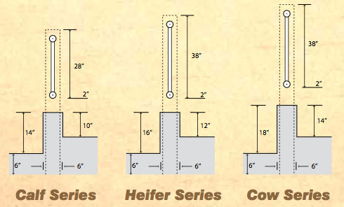 Calf Series, Heifer Series, Cow Series
