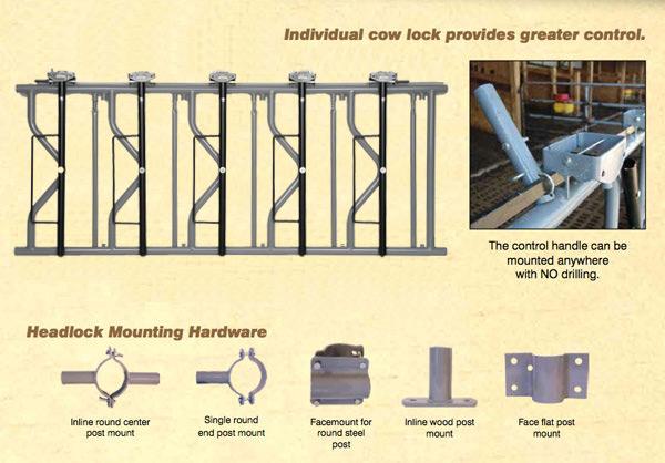 Cattle Headlocks Lancaster Pa Ck Manufacturing